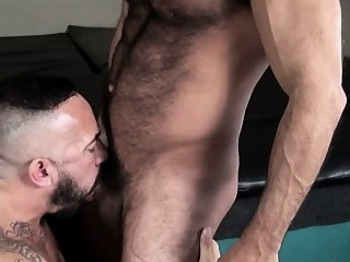 Tattooed bear barebacking tight mature ass bareback (gay) bears (gay) blowjob (gay)